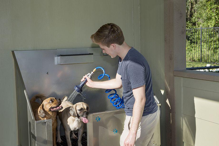 Dog Wash at Camden Westchase Park Apartments in Tampa, FL