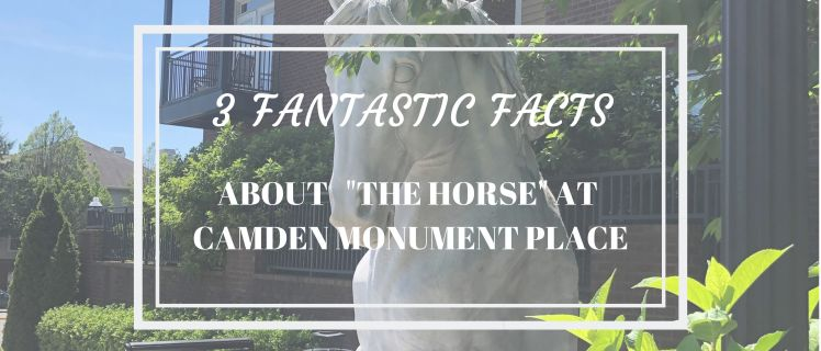 3 Fantastic Facts About The Horse At Camden Monunent Place