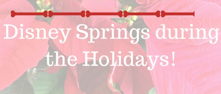 Disney Springs Orlando FL Holidays
