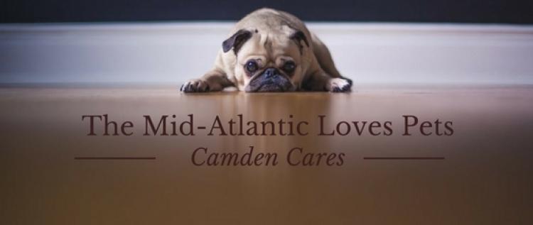 Mid-Atlantic Camden Cares Loves Pets!