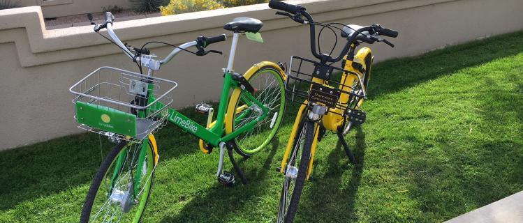 Bike Rentals