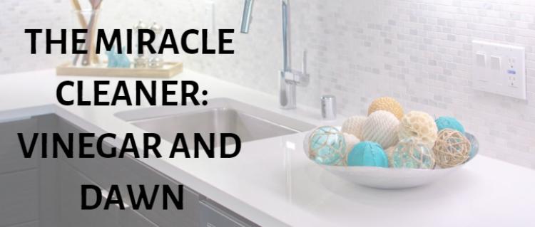 cleaning-home-bathroom-kitchen-vinegar-dawn