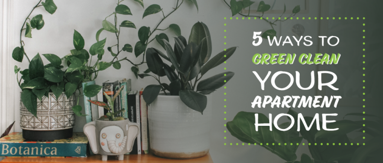 5 Ways to Green Clean Your Apartment Home