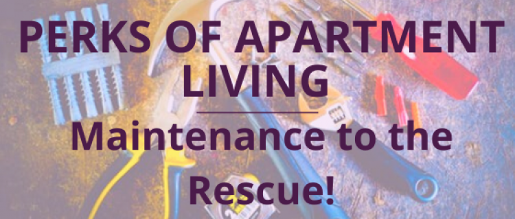 Parks of Living in an Apartment: Maintenance to the Rescue!