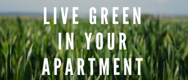 Live Green in Your Apartment Home