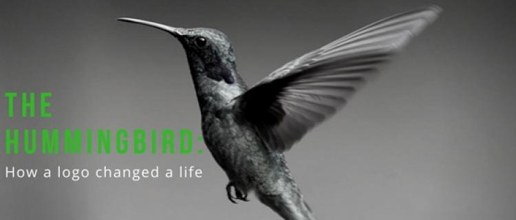 The Hummingbird: How a Logo Changed a Life