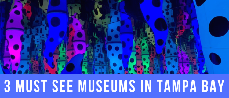 3 Must See Museums in Tampa Bay